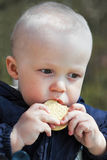 Child eats cookies Stock Photography