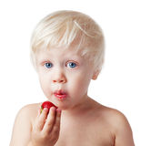 Child eats strawberries. Royalty Free Stock Image