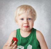 Child eats strawberries. Royalty Free Stock Photography