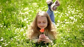 Child enjoy fragrance of tulip while lying at meadow. Girl with long hair lying on grassplot, grass background. Girl on stock footage