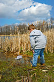 Child Exploring Swamp Stock Image