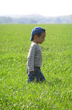 Child exploring the wide world Royalty Free Stock Photography