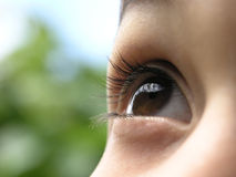 Child eye Stock Photography