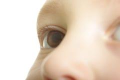 Child eye. Close-up focus on eye isolated stock photo