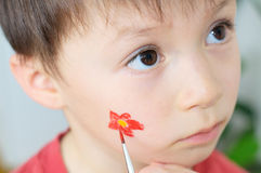 Child face painting. Painting  flower for party on Caucasian boy child face Royalty Free Stock Photography