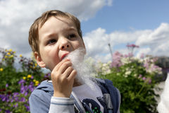 Child with fairy floss Stock Images