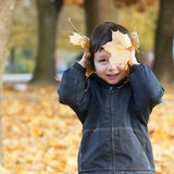 Child in fall park. Portrait of a child playing with dry yellow maple leaves in a park; autumn or fall concept Stock Image