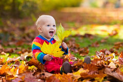 Child in fall park. Kid with autumn leaves. Stock Photos