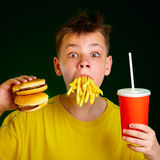 Child and fast food. Stock Photos