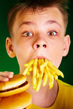 Child and fast food. Royalty Free Stock Photo