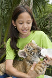 Child feeding baby tiger Stock Photos