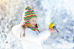 Child feeding bird in winter park. Kids play in snow. Nature and Stock Image