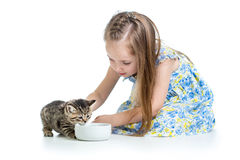 Child feeding cat kitten Stock Images