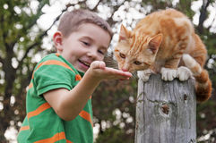 Child feeding cat on post Stock Photos