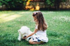 Child feeding dog Royalty Free Stock Photography