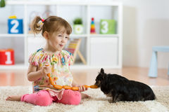 Child feeding dog. By saugage at home Royalty Free Stock Photo