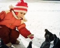 Child feeding doves Royalty Free Stock Photos