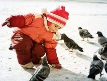 Child feeding doves Stock Photo