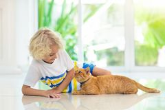 Child feeding home cat. Kids and pets stock photography