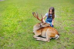 Child feeding wild deer at petting zoo. Kids feed animals at outdoor safari park. Kid and pet animal. Girl feeds wild deer at petting zoo. Kids with animals at royalty free stock photo