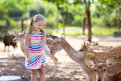 Child feeding wild deer at zoo. Kids feed animals. Child feeding wild deer at petting zoo. Kids feed animals at outdoor safari park. Little girl watching stock images