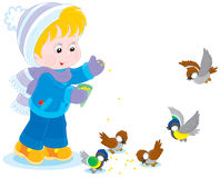 Child feeds birds. Little boy or girl feeding a small flock of sparrows and titmice Royalty Free Stock Image