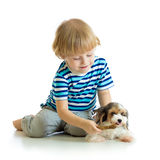Child feeds dog puppy isolated on white background royalty free stock photo