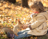 Child feeds a little squirrel. Happy child feeds a little squirrel in autumn park stock photo