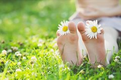 Child feet with daisy flower on green grass. In a summer park Stock Photography