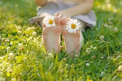 Child feet with daisy flower on green grass. In a summer park Stock Images
