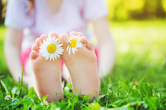 Child feet with daisy flower on green grass in a summer park. Royalty Free Stock Photos