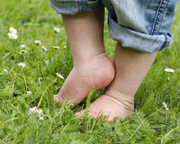 Child feet on grass. Bare feet of a small child in denim trouses on a grass lawn Stock Photo