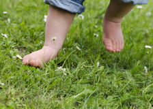 Child feet on grass. Bare feet of a small child in denim trouses on a grass lawn Royalty Free Stock Photography