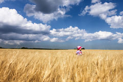 Child in the field Stock Photography