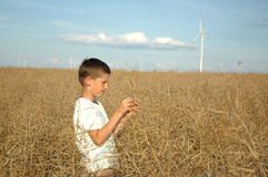 Child on the field ofwind power stations Stock Photo