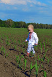 The child in a field Royalty Free Stock Photos
