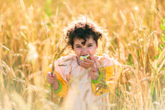 Child in a field of wheat Stock Photos