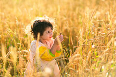 Child in a field of wheat Stock Images