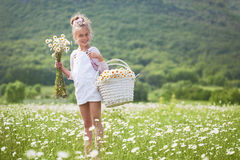Child in field Royalty Free Stock Images
