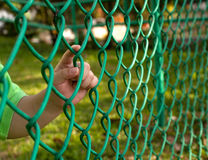 Child finger on fence Stock Photo