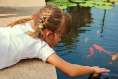 Child and fish Stock Images