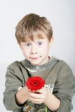 Child with flower. Sweet young boy with a flower royalty free stock photography