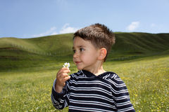 Child with flower. In a green grass field Royalty Free Stock Photo