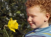 Child with Flower Royalty Free Stock Photos