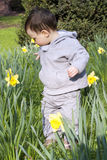 Child flower garden Royalty Free Stock Images