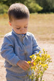 Child with a flower. Child looking and touching a yellow flower Stock Photography