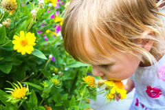 Child with flower portrait Royalty Free Stock Image