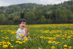 Child in flowers Royalty Free Stock Photo
