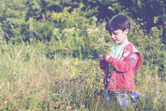 Child with flowers. In spring Stock Photo