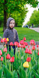Child and Flowers. Child standing near blooming tulips Stock Images